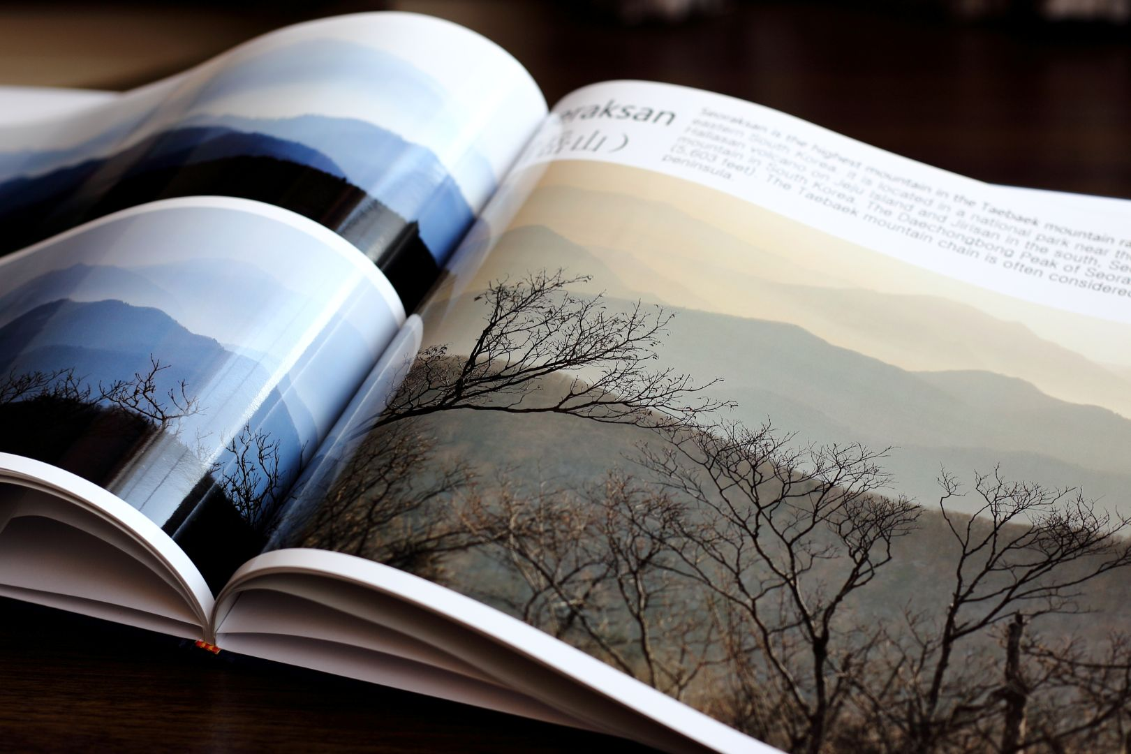 livres pour apprendre la photographie